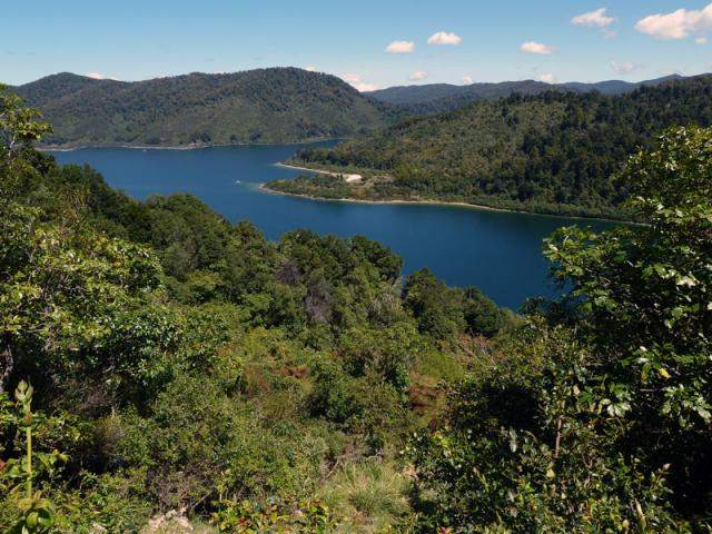 Home To Lake Waikaremoana