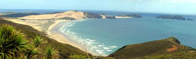 Looking South from Cape Reinga